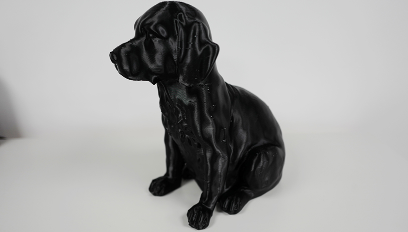 Fluxaxis Dog