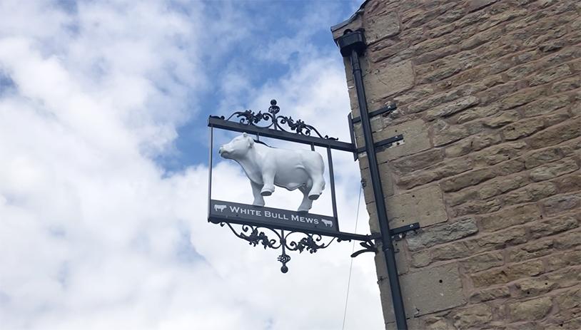 Fluxaxis Bull